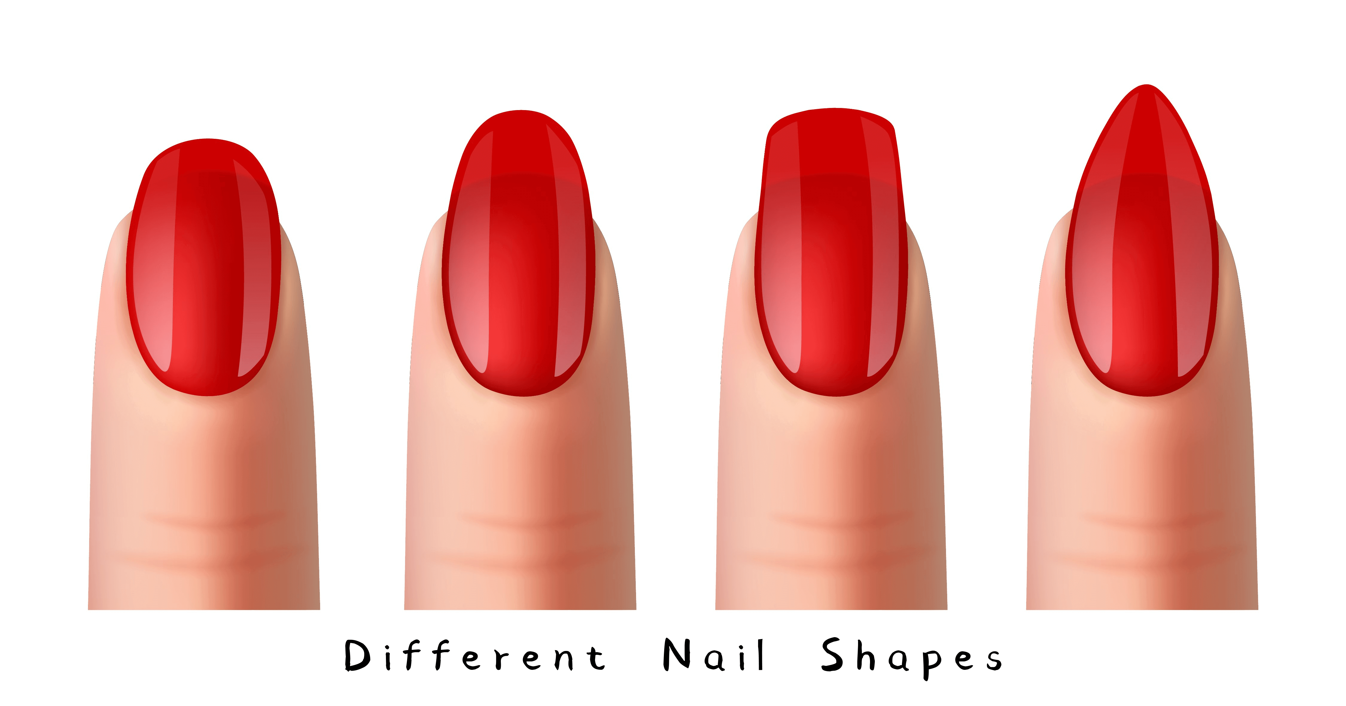 different-nail-shapes